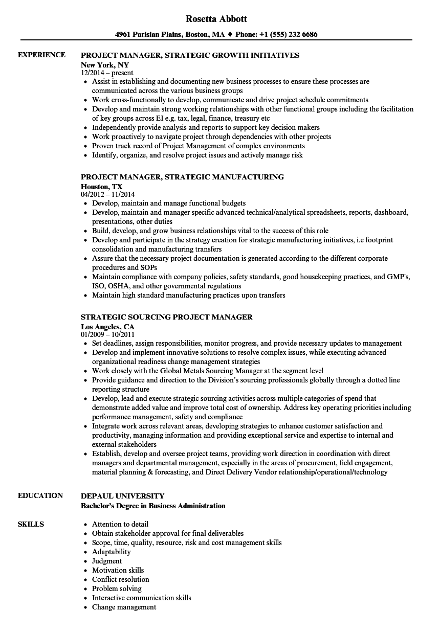 Manager Strategic Project Resume Samples Velvet Jobs