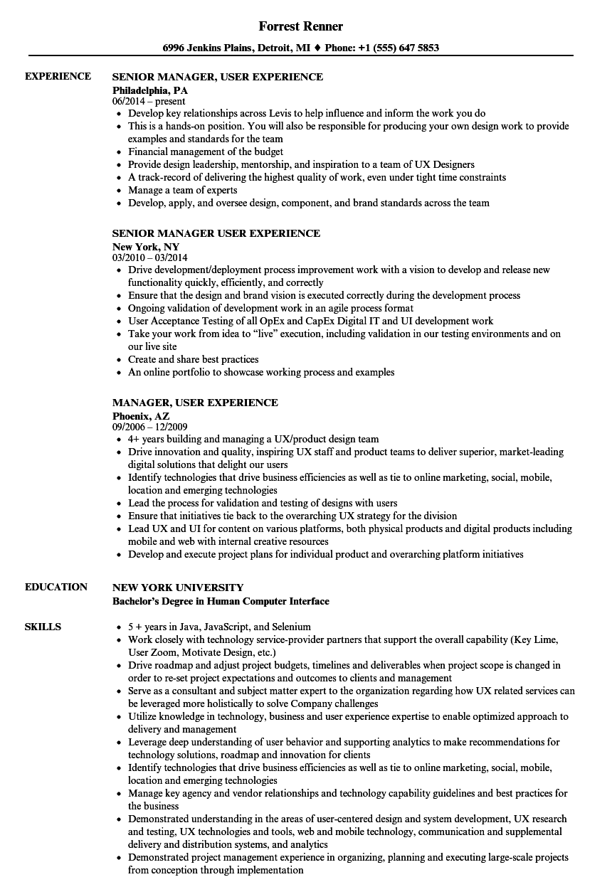manager  user experience resume samples