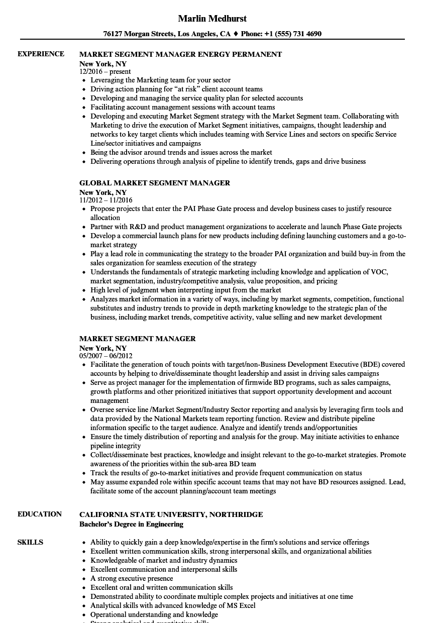 market segment manager resume samples