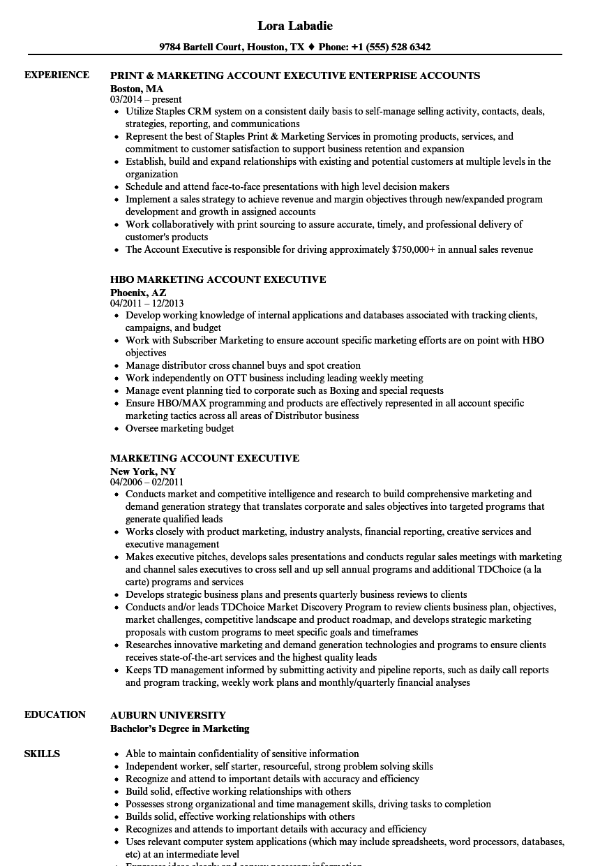 Marketing Account Executive Resume Samples | Velvet Jobs