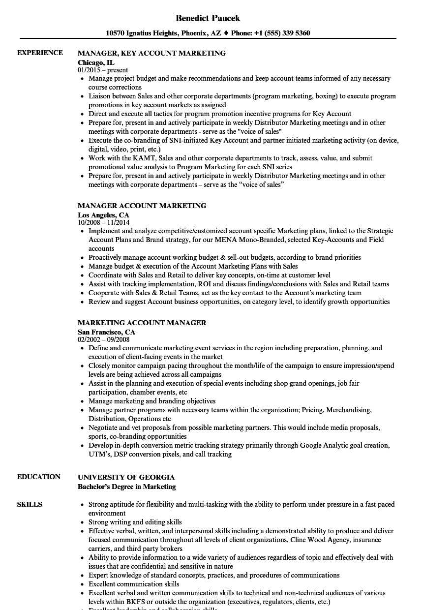 marketing account manager resume samples