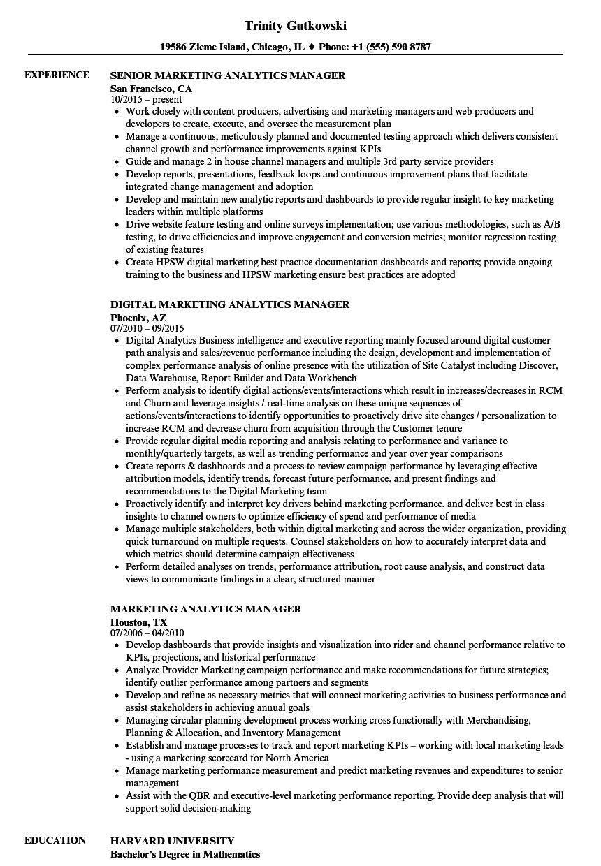 Marketing Analytics Manager Resume Samples | Velvet Jobs