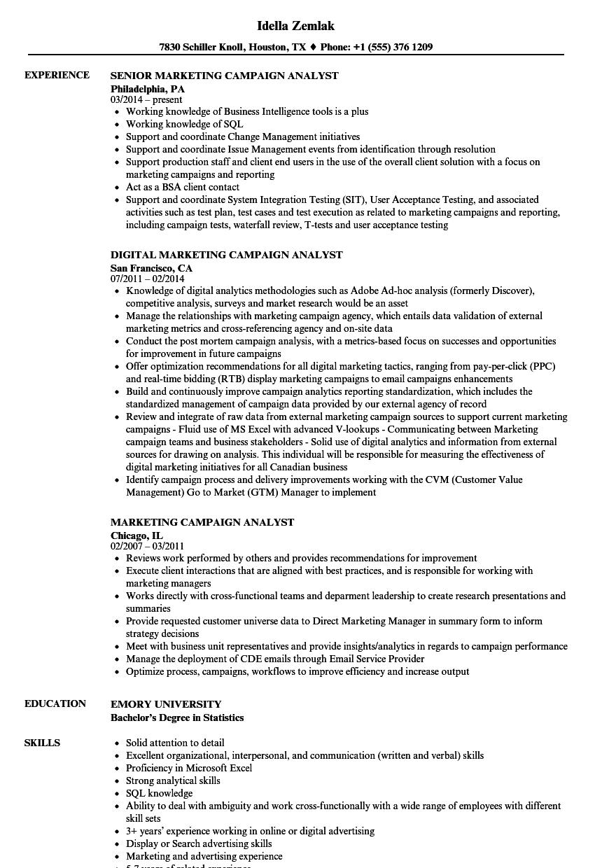Marketing / Campaign Analyst Resume Samples | Velvet Jobs