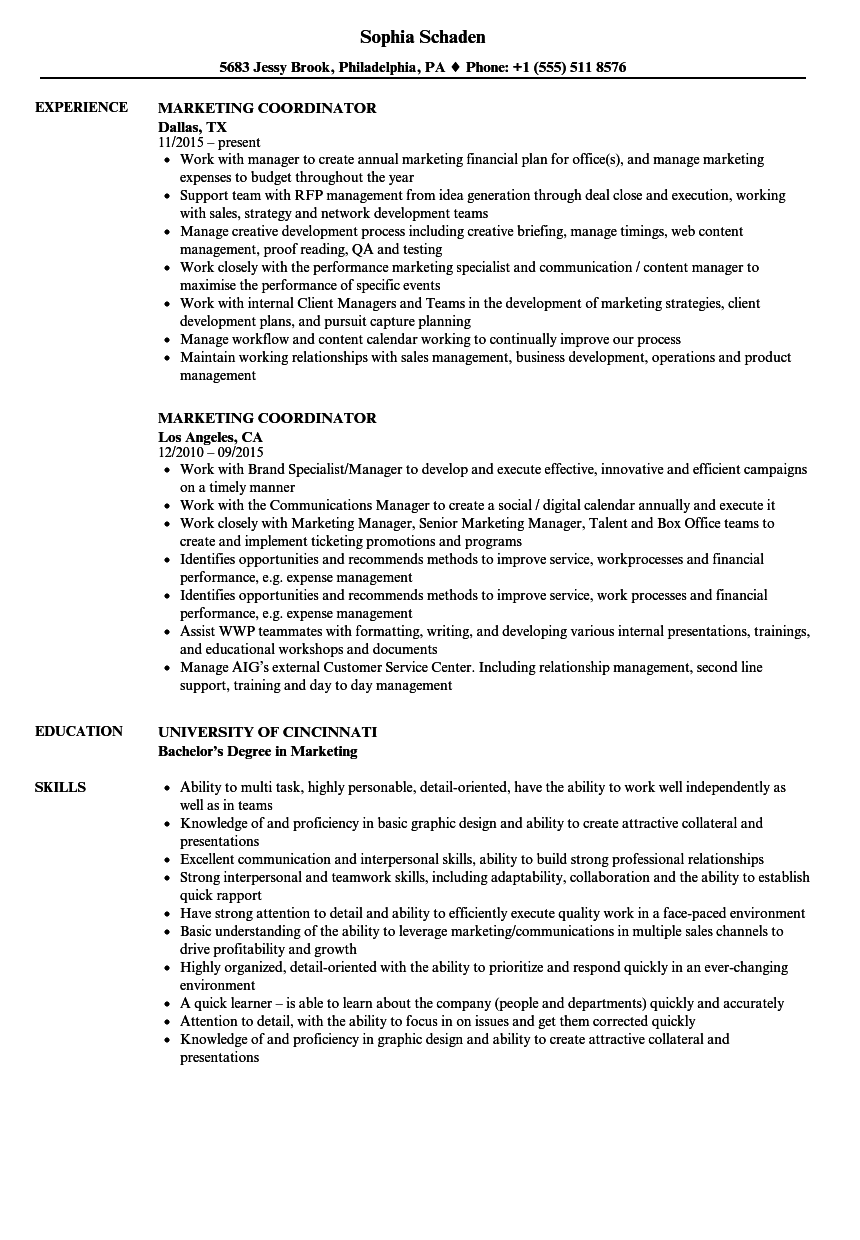 resume sample of marketing coordinator