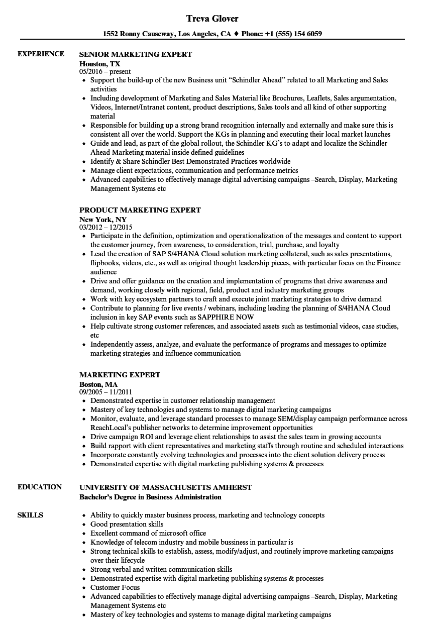 download marketing expert resume sample as image file - Resume Examples