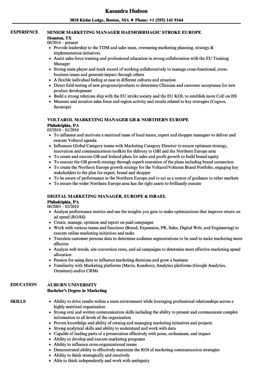 Marketing Manager Europe Resume Samples Velvet Jobs