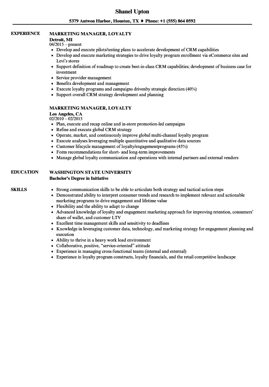Marketing Manager Loyalty Resume Samples Velvet Jobs