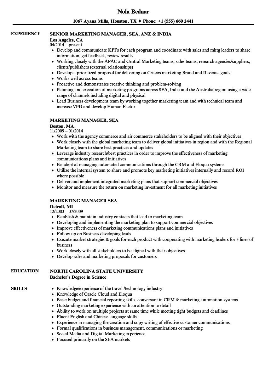 Marketing Manager SEA Resume Samples | Velvet Jobs