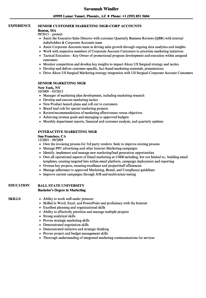 Download Marketing Mgr Resume Sample As Image File  Effective Resume Examples