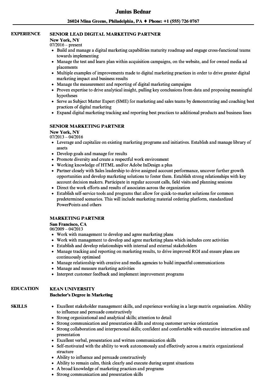 Marketing Partner Resume Samples Velvet Jobs