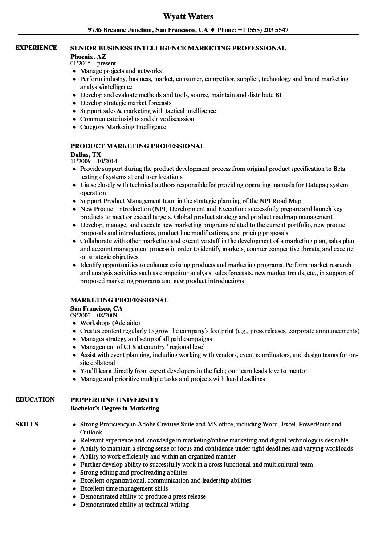 download marketing professional resume sample as image file - Professional Resume Example