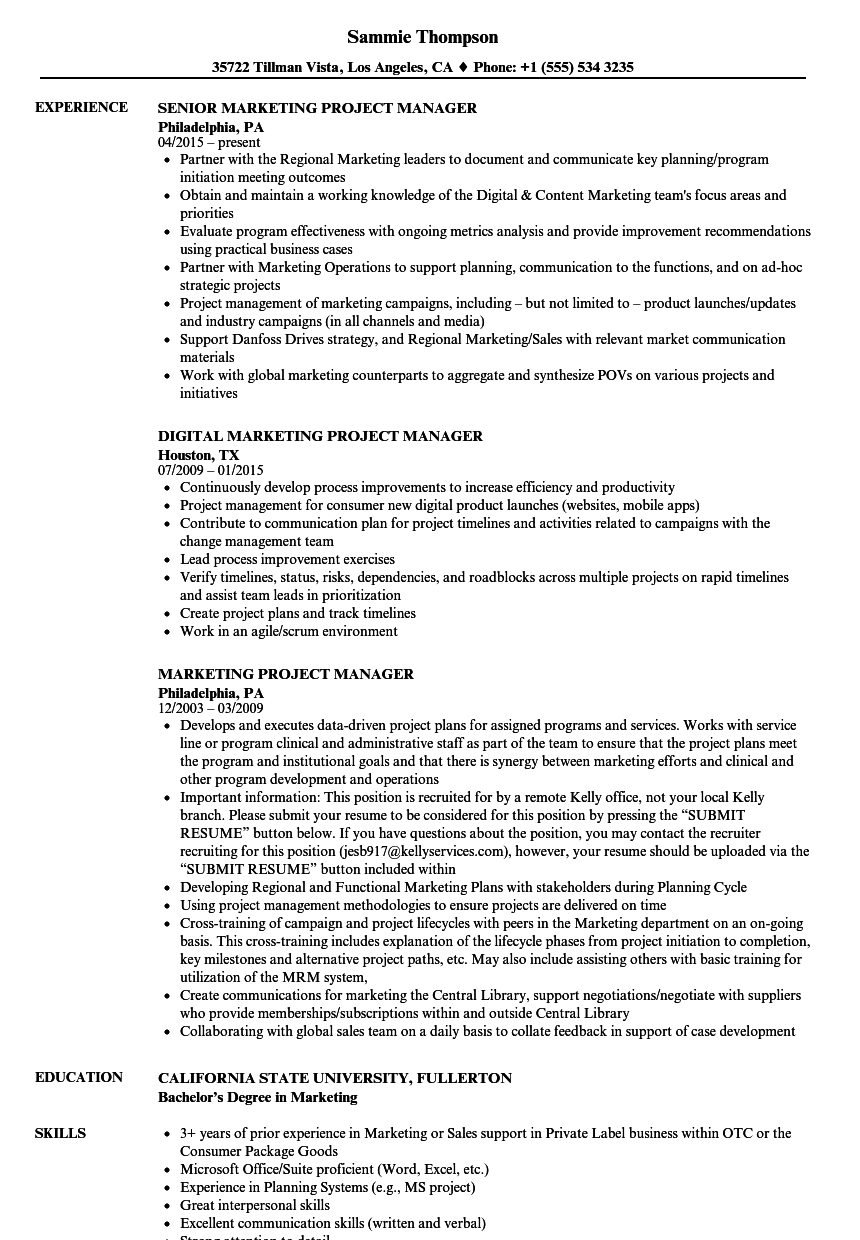 Download Marketing Project Manager Resume Sample As Image File