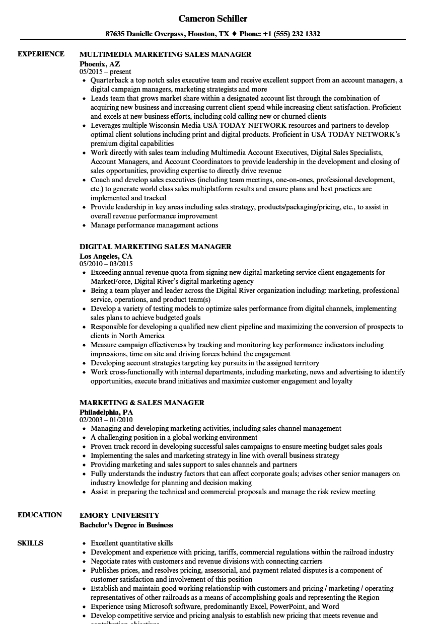 marketing sales manager resume samples