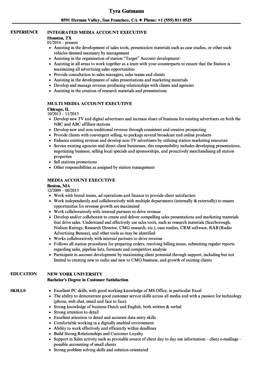 Media Account Executive Resume Samples Velvet Jobs
