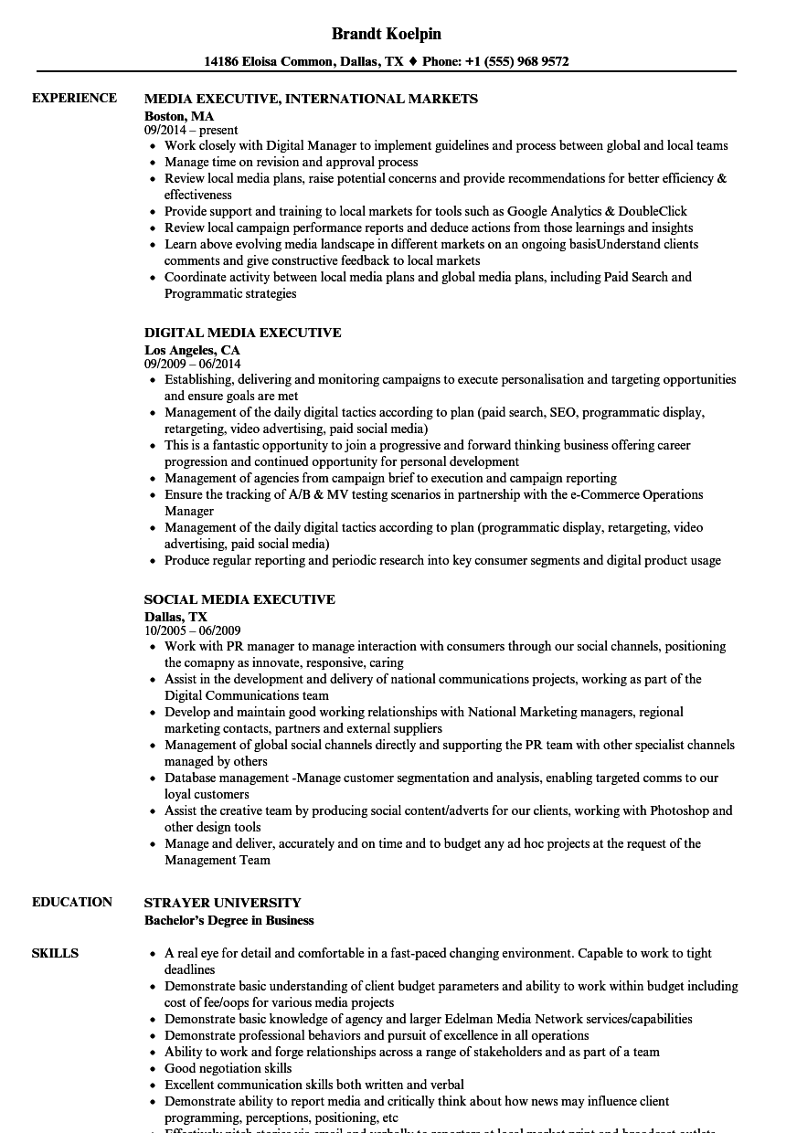 Media Executive Resume Samples | Velvet Jobs