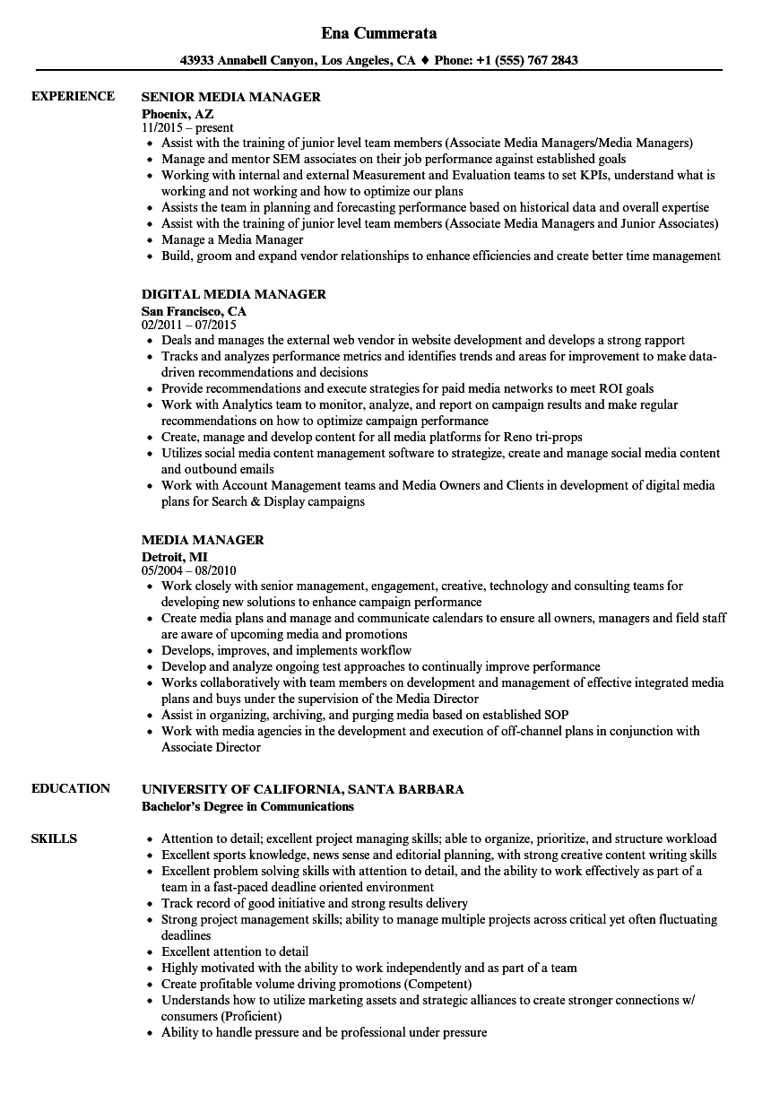 media manager resume samples