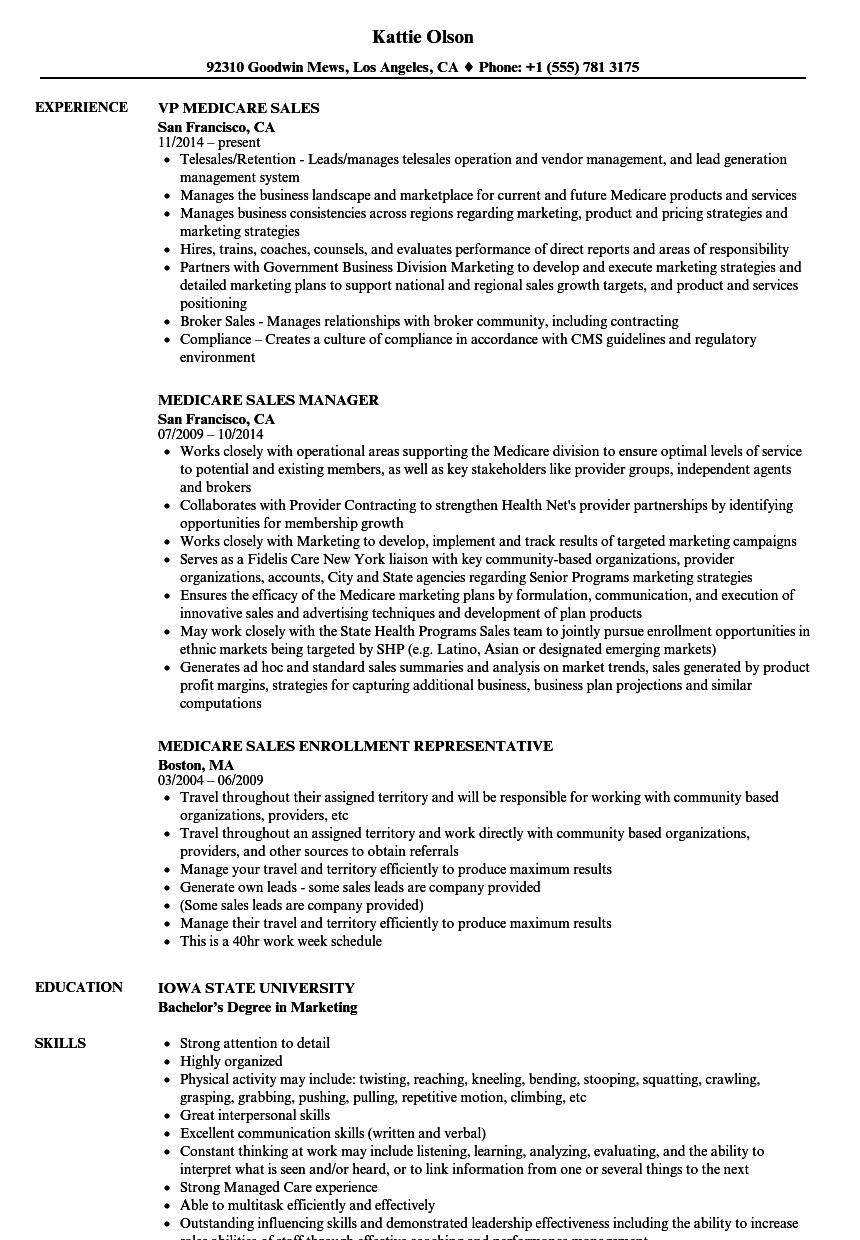 Download Medicare Sales Resume Sample As Image File  Marketing And Sales Resume