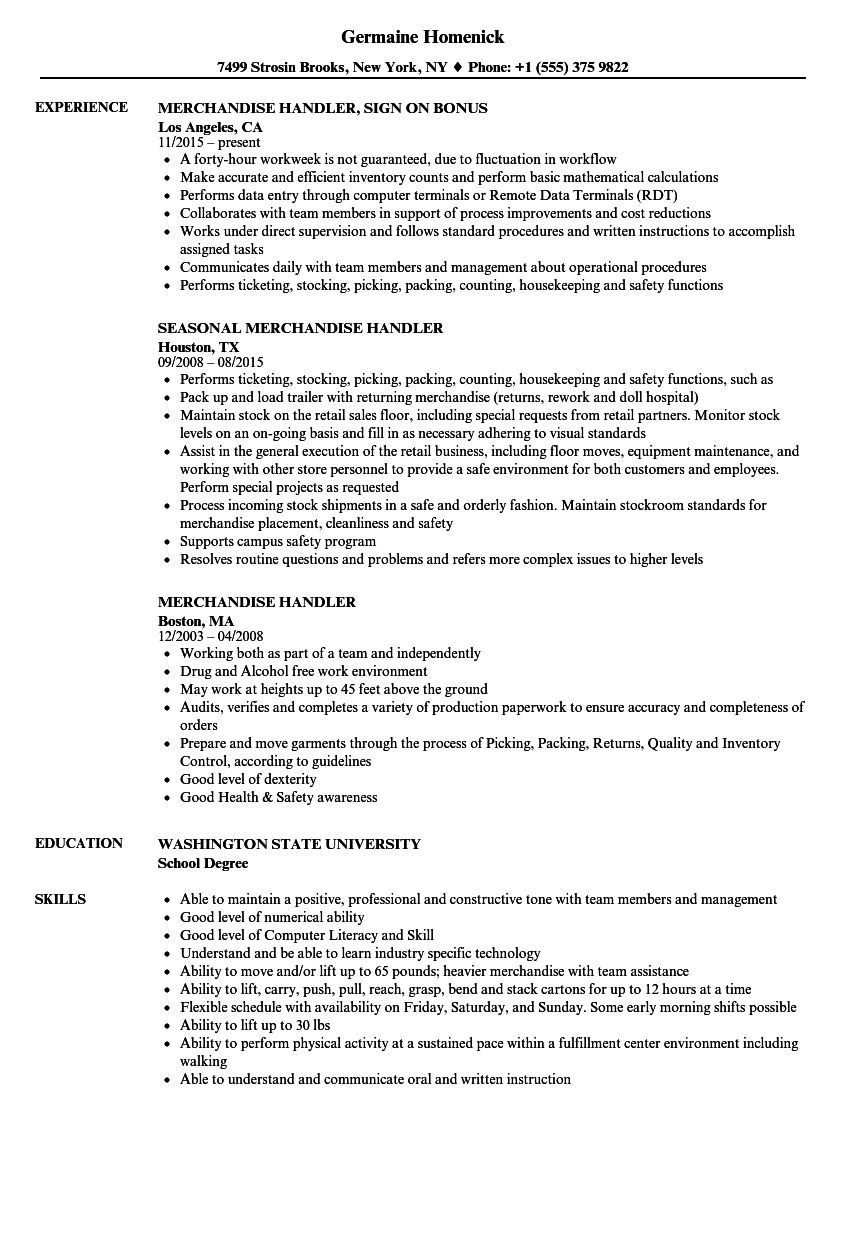 Download Merchandise Handler Resume Sample As Image File