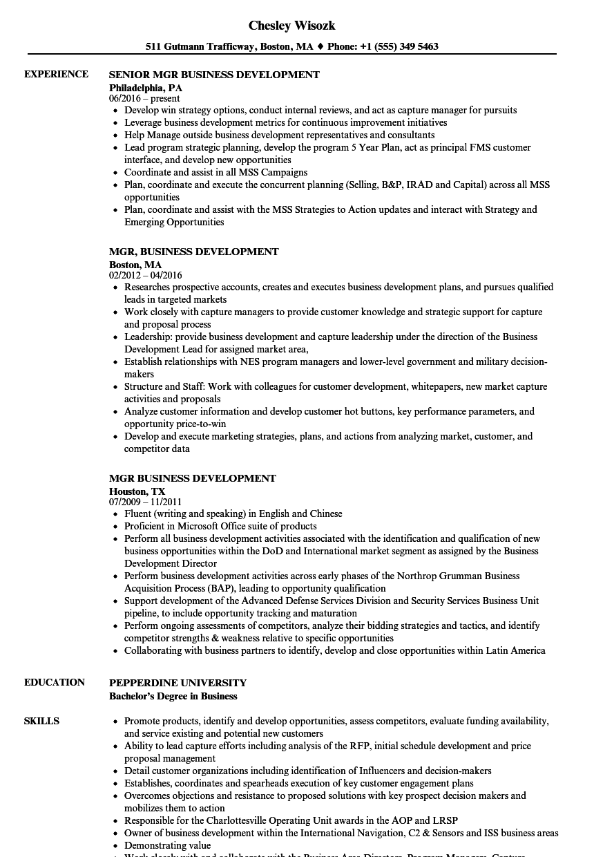 Mgr Business Development Resume Samples | Velvet Jobs