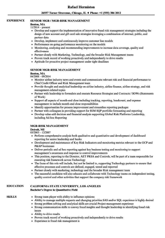 risk management resume samples