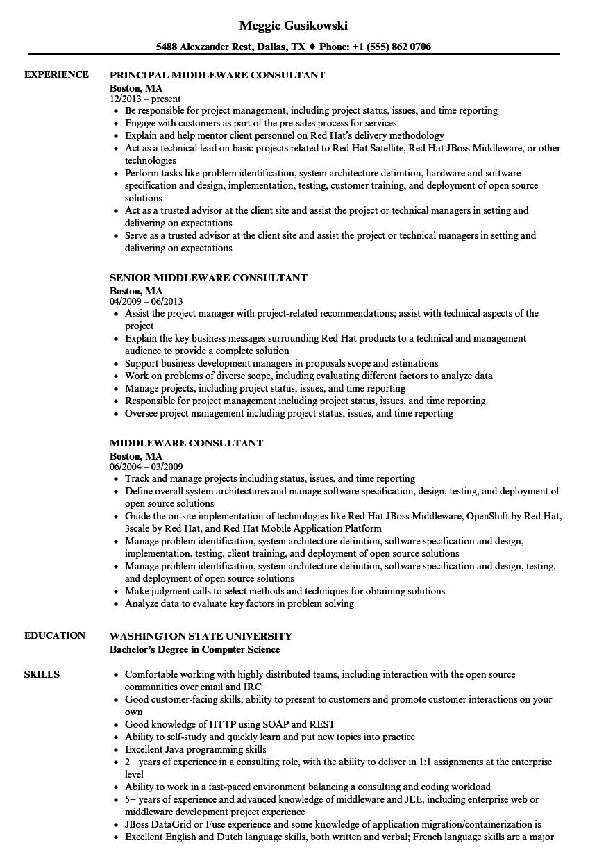 middleware consultant resume samples