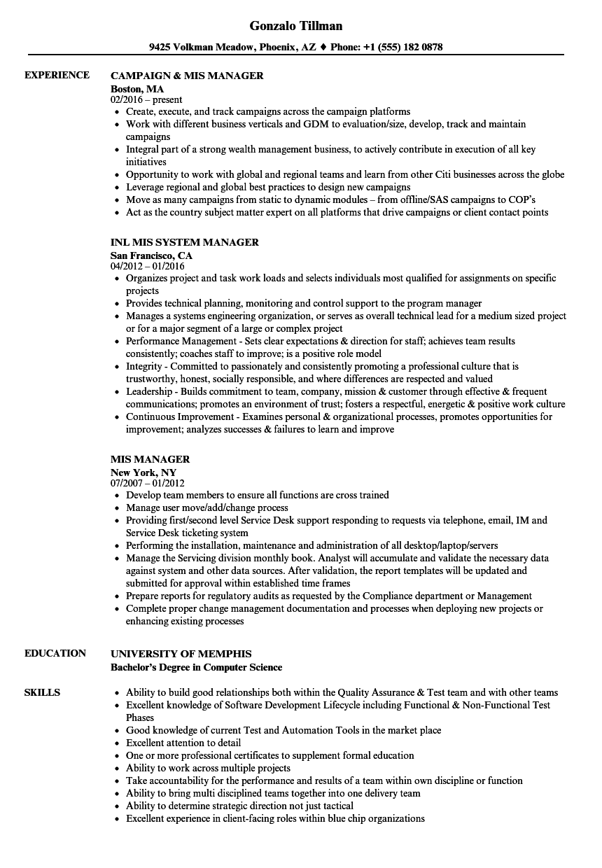 mis manager resume samples