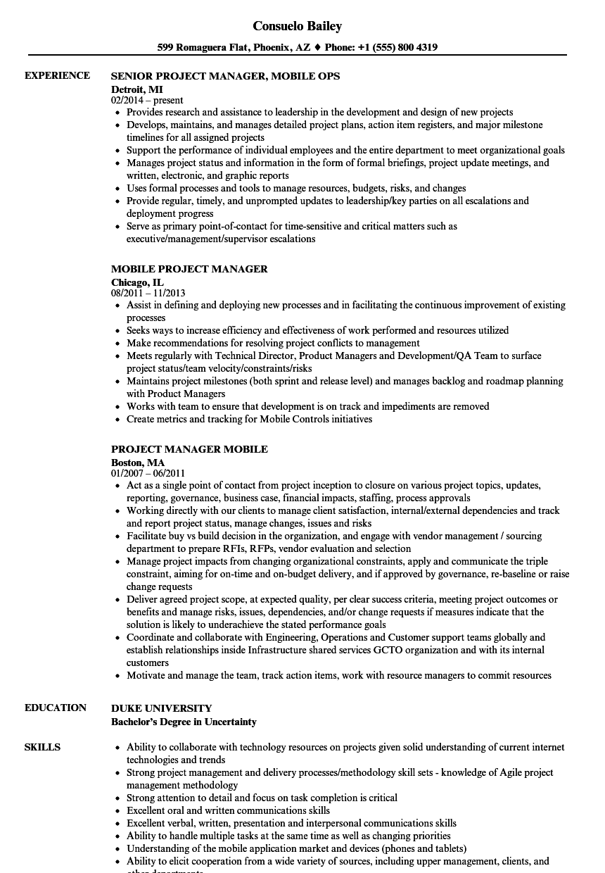 Mobile Project Manager Resume Samples | Velvet Jobs