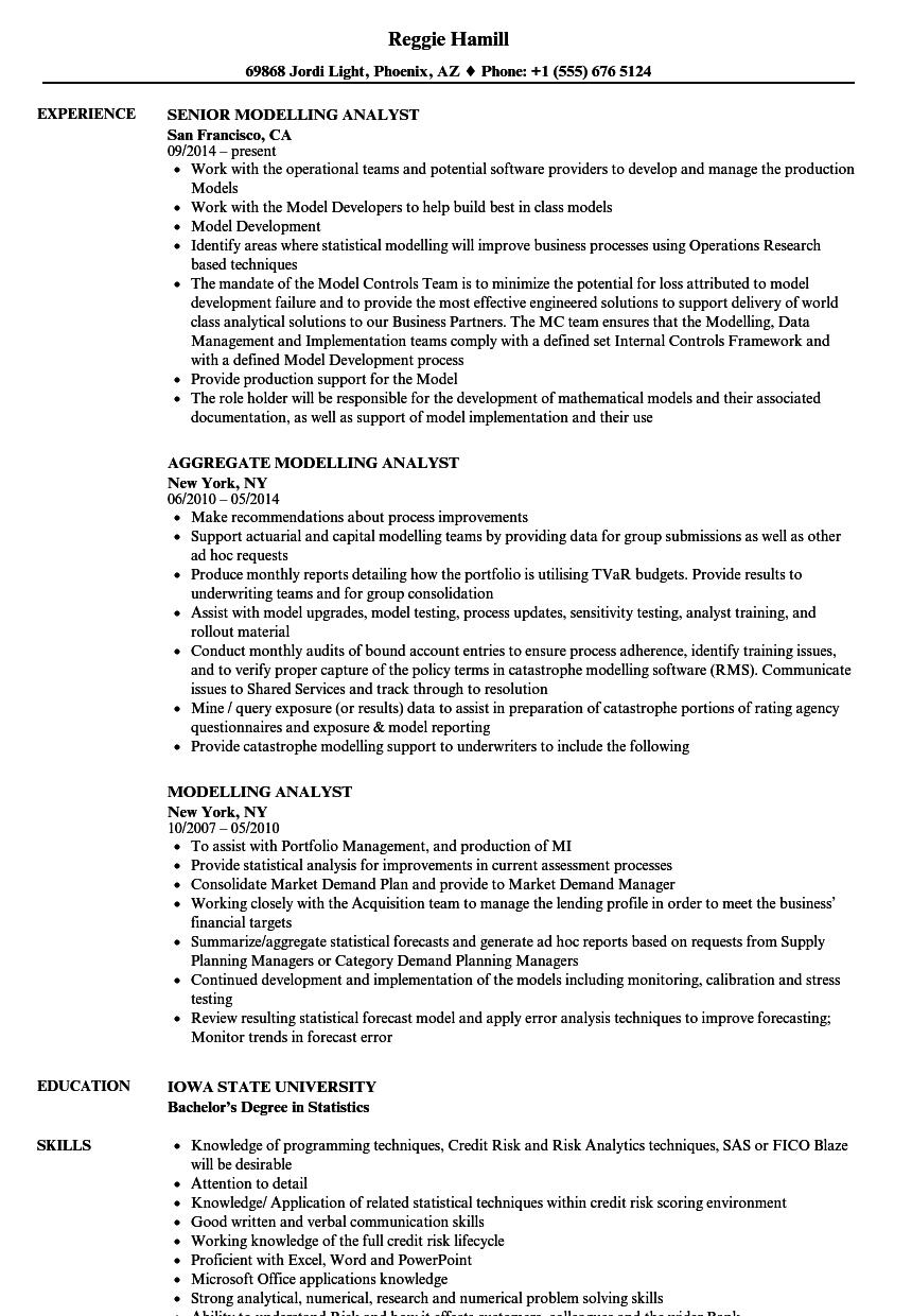 modelling analyst resume samples
