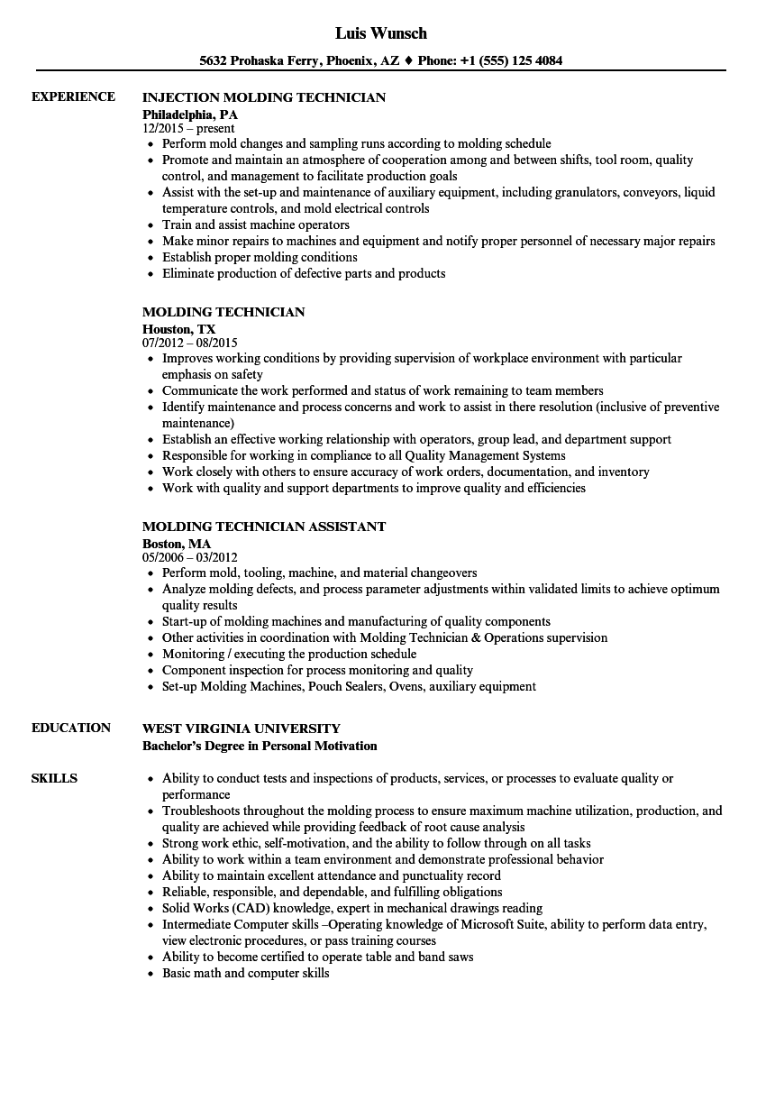 Molding Technician Resume Samples | Velvet Jobs