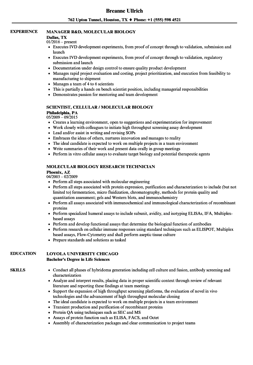 molecular biology resume samples velvet jobs
