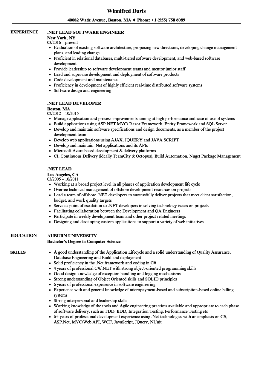net lead resume samples