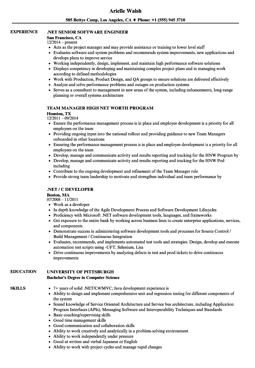 net resume samples
