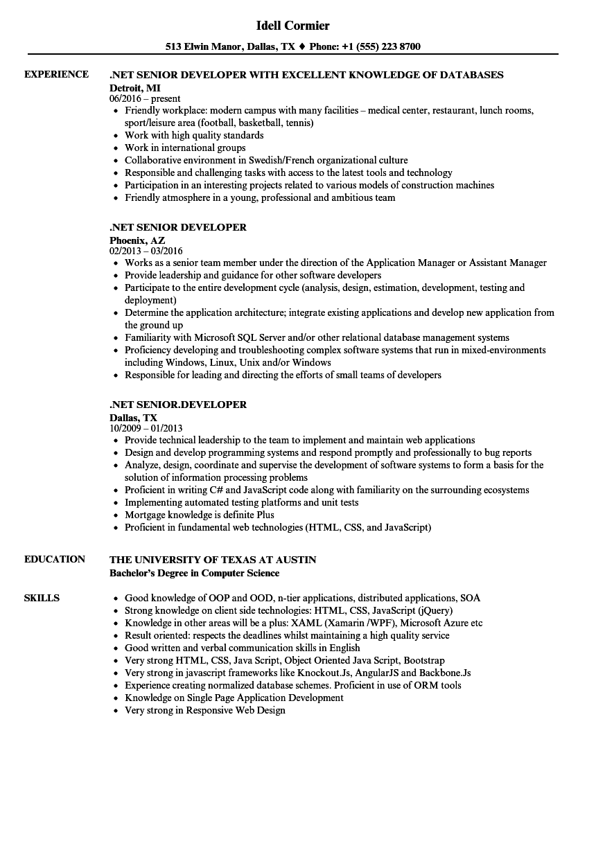NET Senior Developer Resume Sample As Image File  Senior Developer Resume