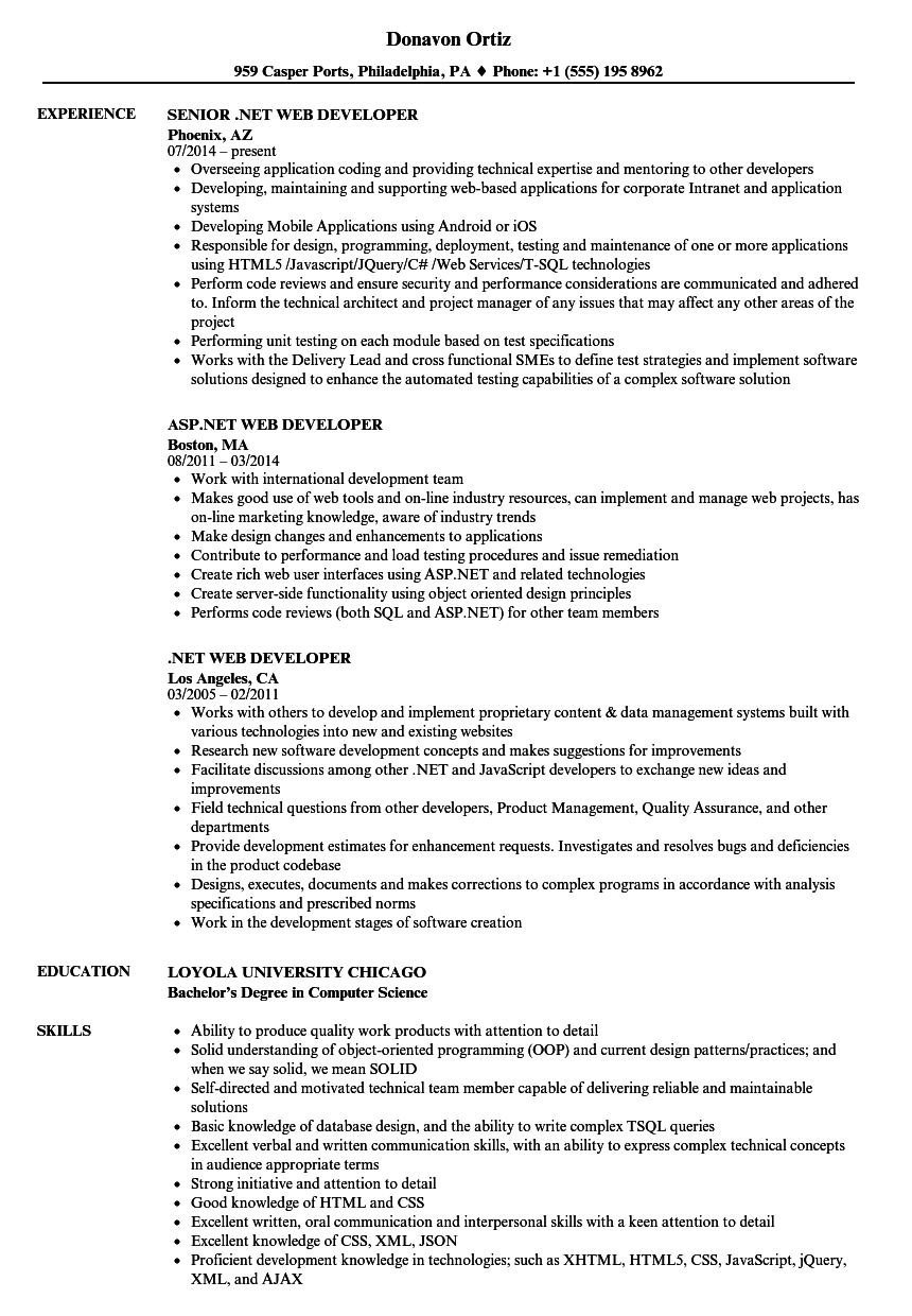NET Web Developer Resume Sample As Image File