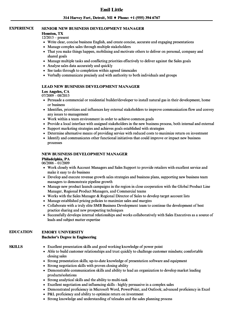 Download New Business Development Manager Resume Sample As Image File