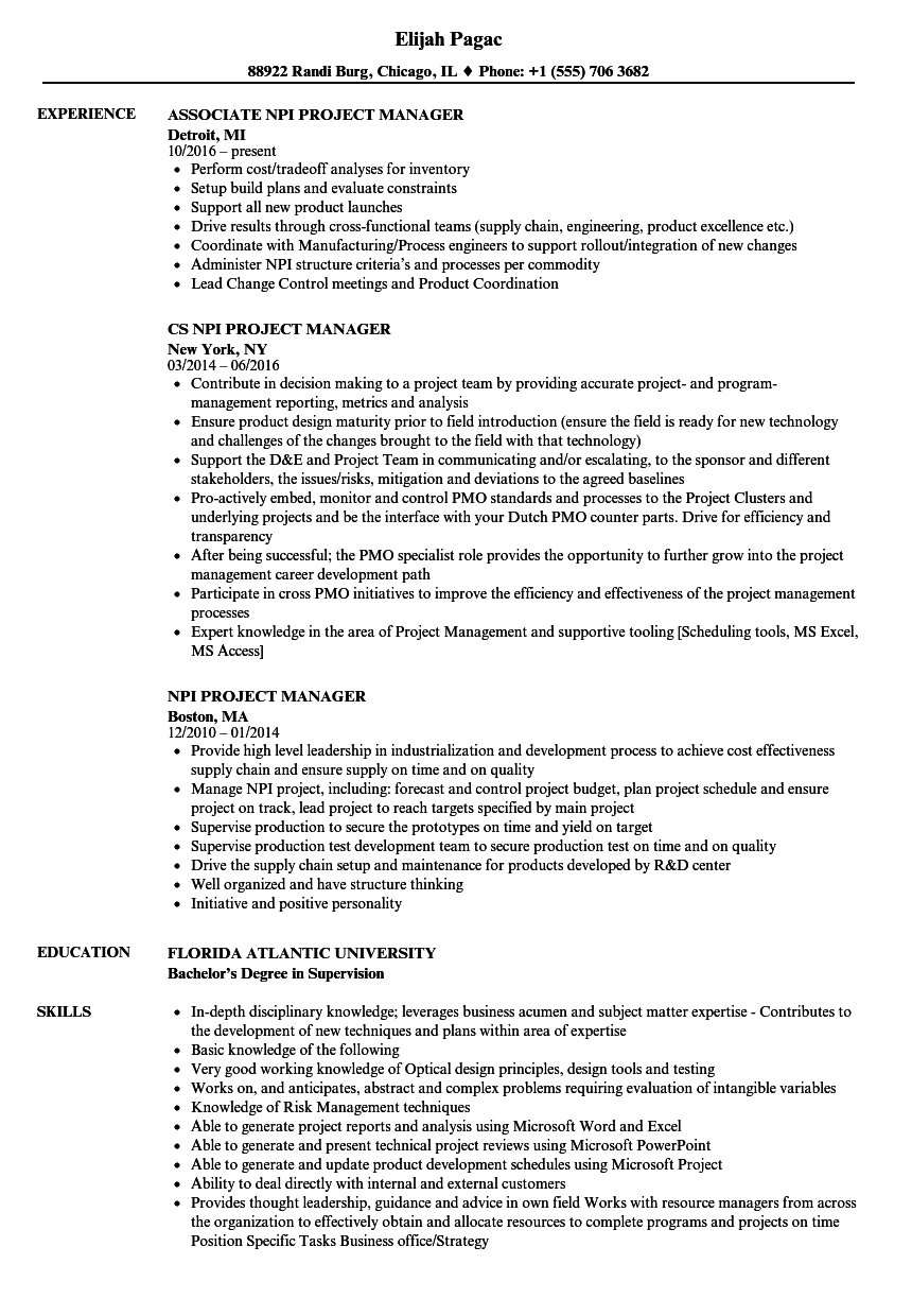 npi project manager resume samples