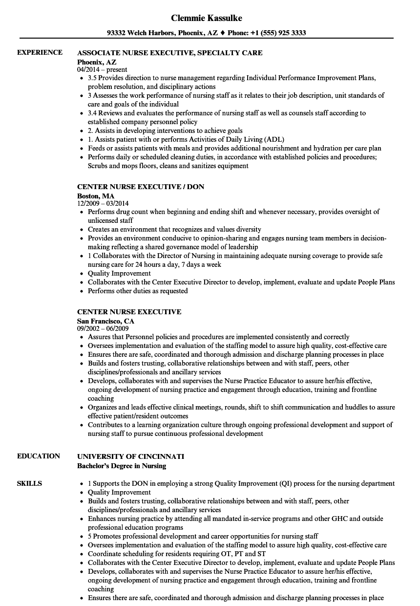 nurse executive resume samples velvet jobs