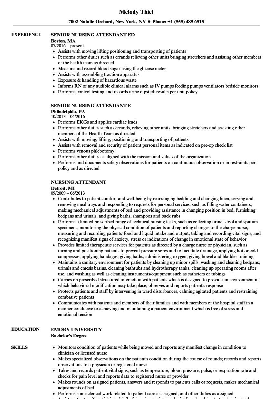 download nursing attendant resume sample as image file