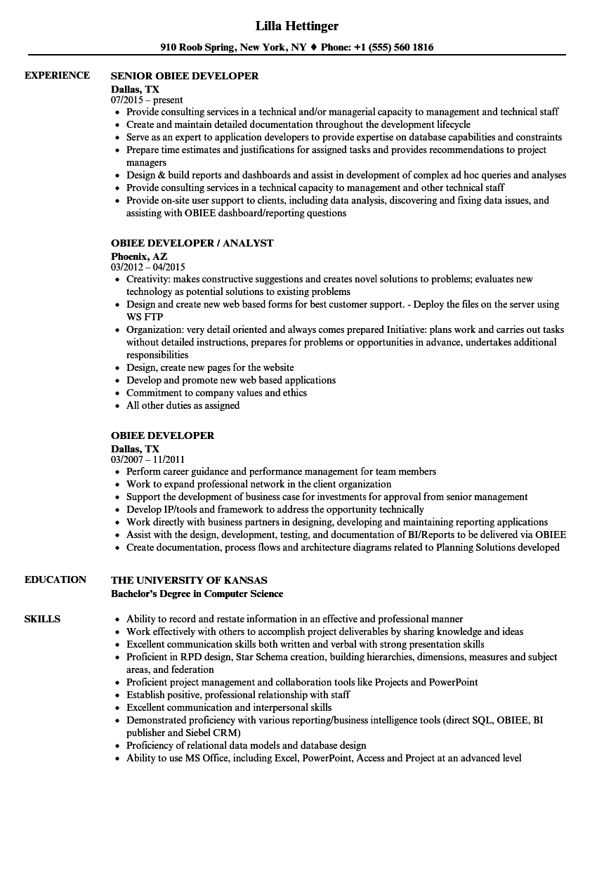 Obiee Developer Resume - Professional Resume Templates •