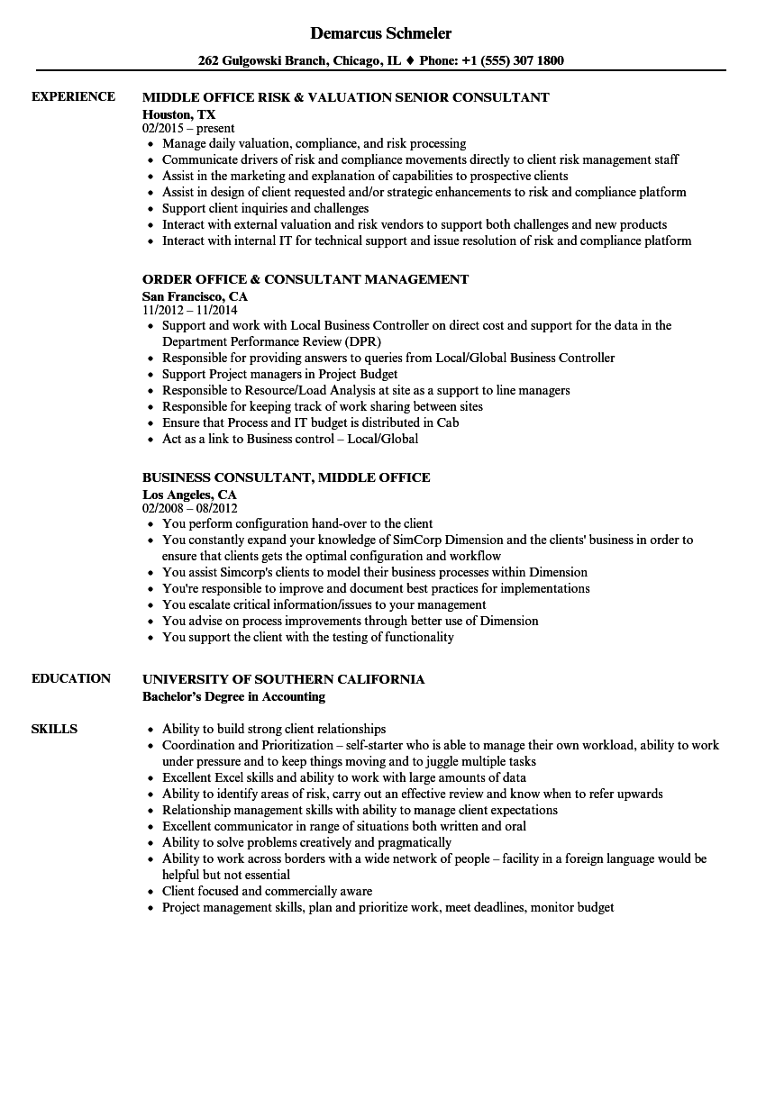 office consultant resume samples