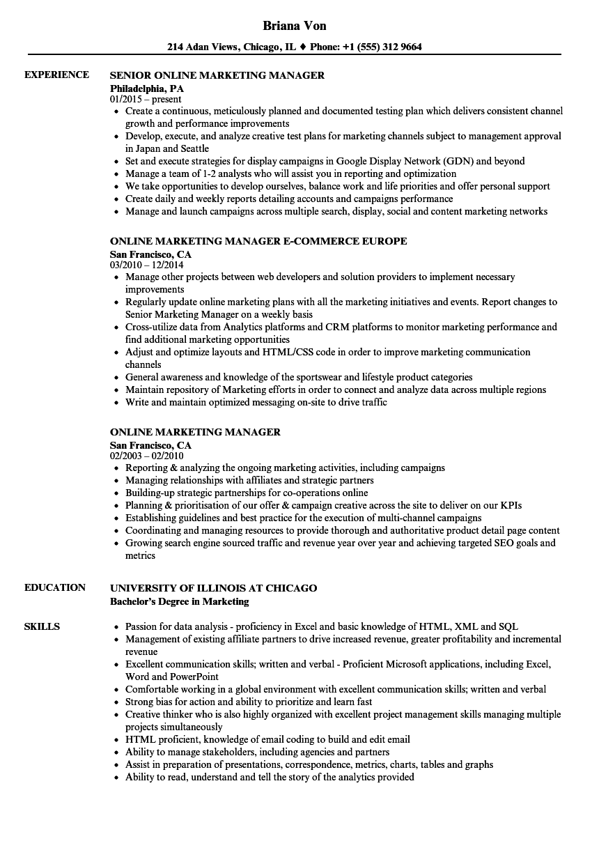 download online marketing manager resume sample as image file - Online Marketing Resume Sample