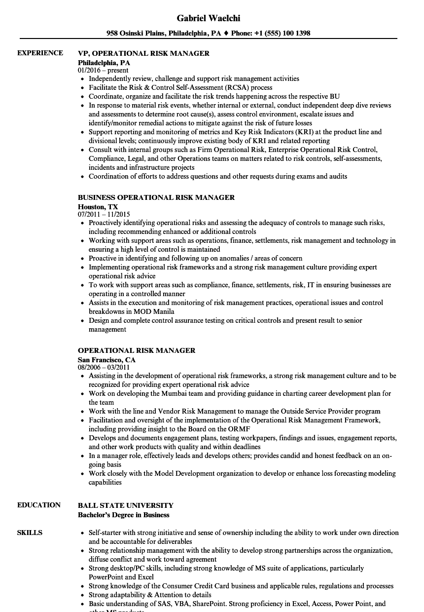 Operational Risk Manager Resume Samples Velvet Jobs