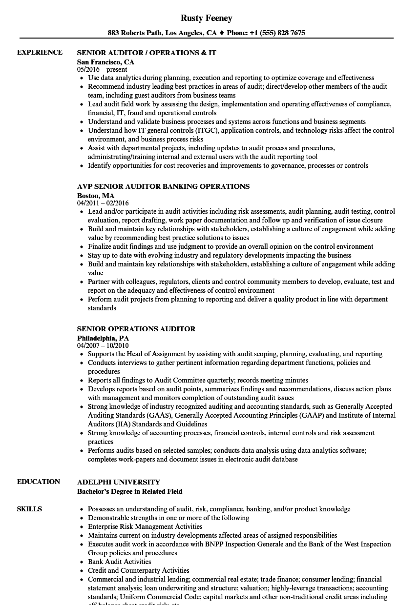 Operations Auditor Resume Samples | Velvet Jobs