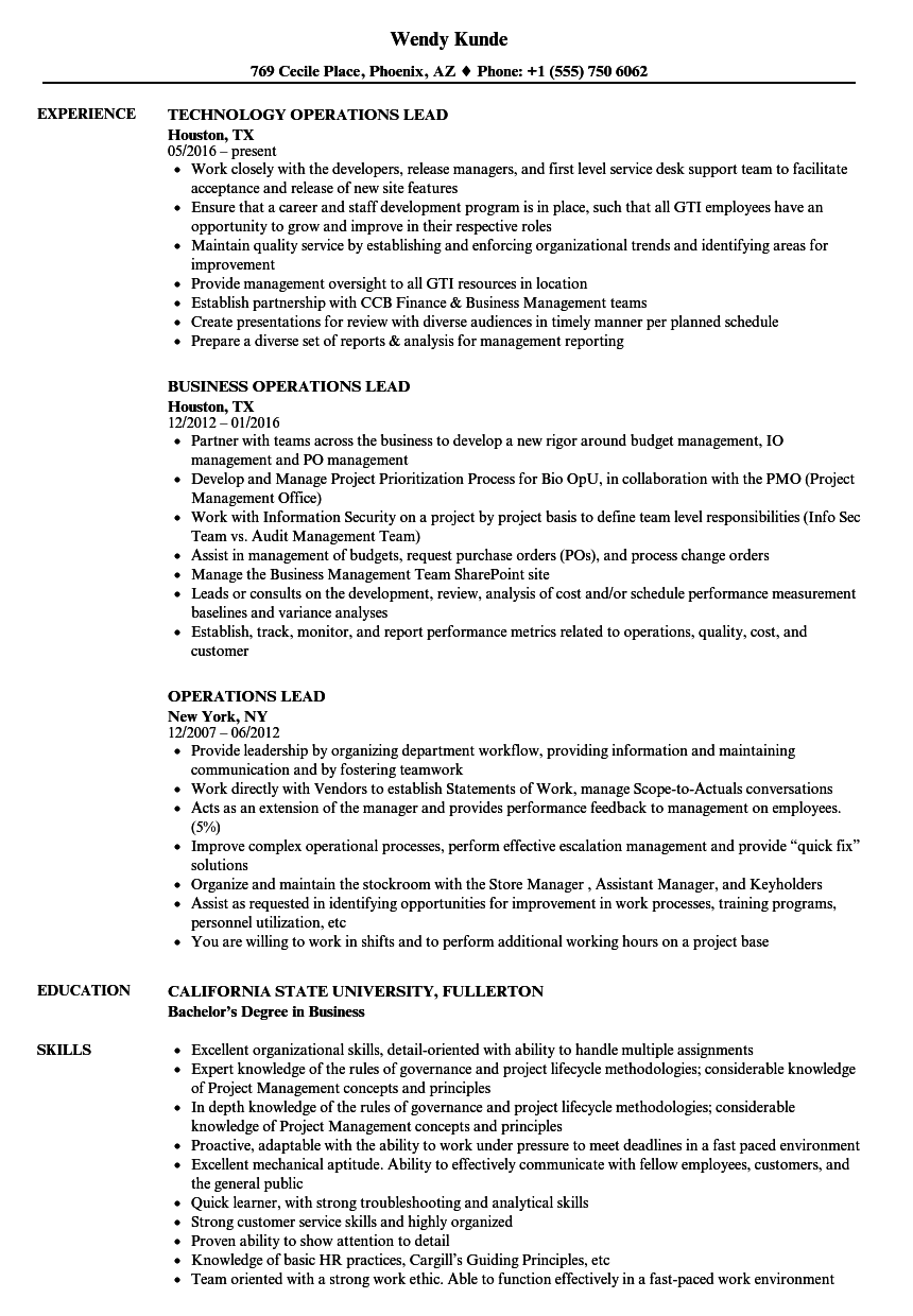operations lead resume samples velvet jobs
