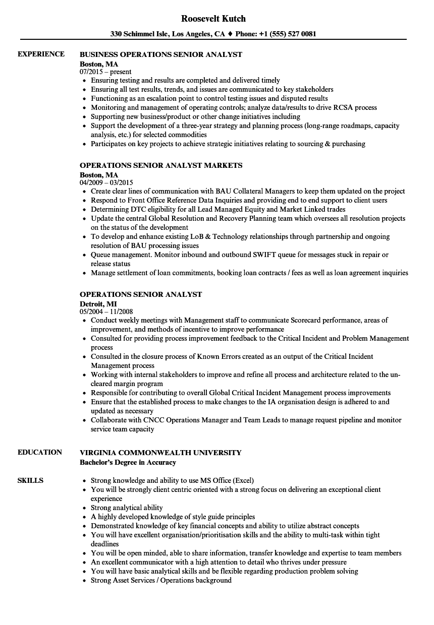 business analyst resume with e commerce hosting federal