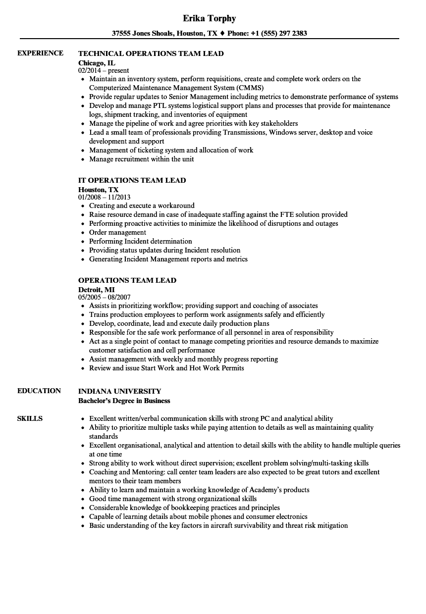Velvet Jobs  Team Lead Resume