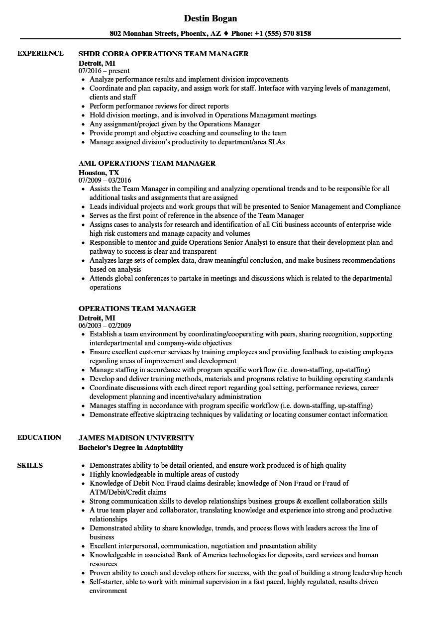 Download Operations Team Manager Resume Sample As Image File
