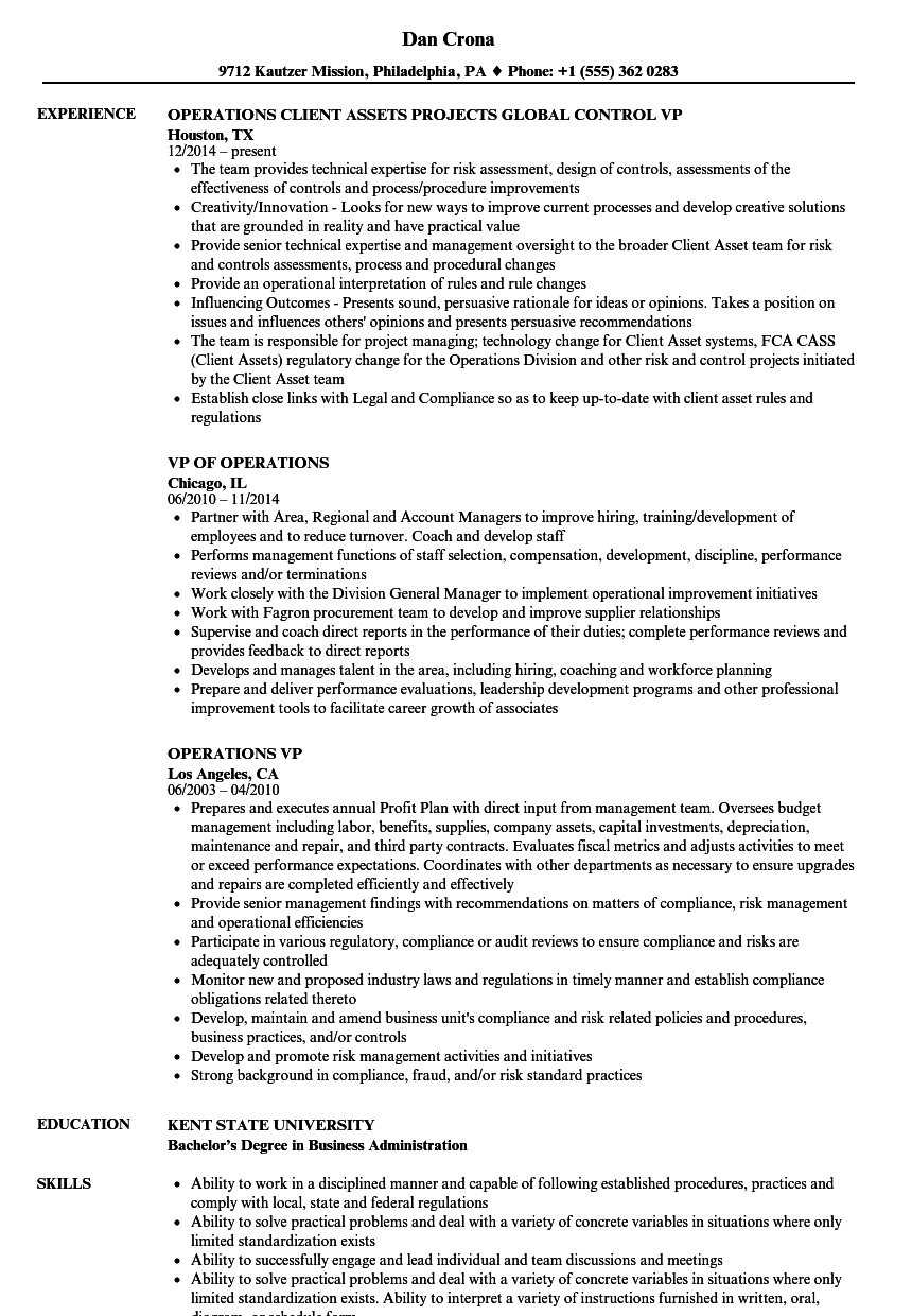 operations vp resume samples