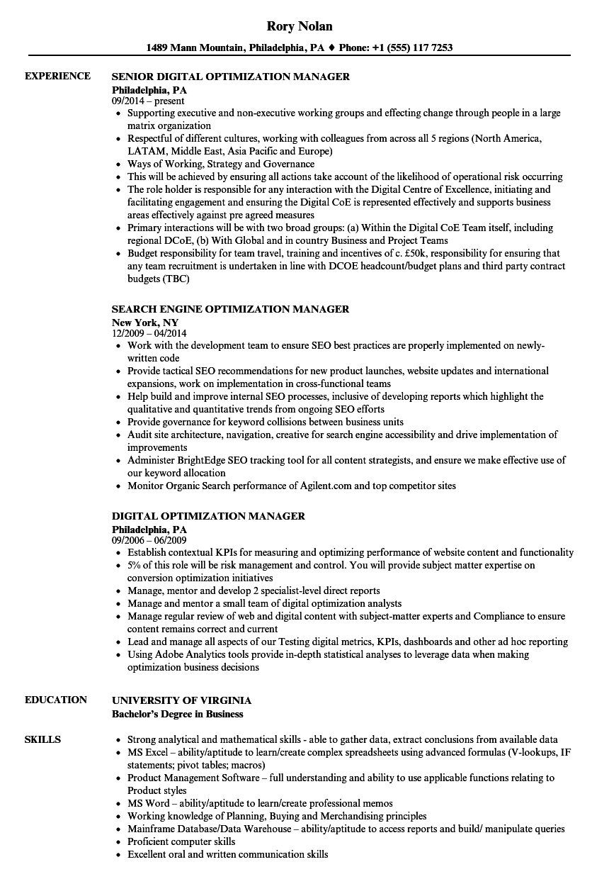 Optimization Manager Resume Samples | Velvet Jobs