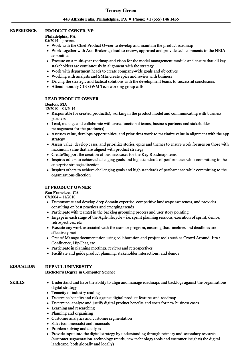 Owner Product Resume Samples Velvet Jobs